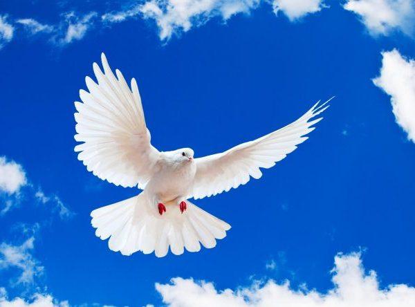¿Cuántos Espíritus Santos hay?